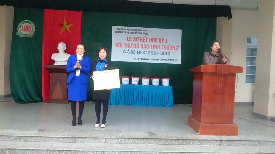 Thái Nguyên: Một Cánh én hồng tiêu biểu trong công tác Đội và phong trào thiếu nhi